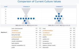 Compatibilité Culturelle