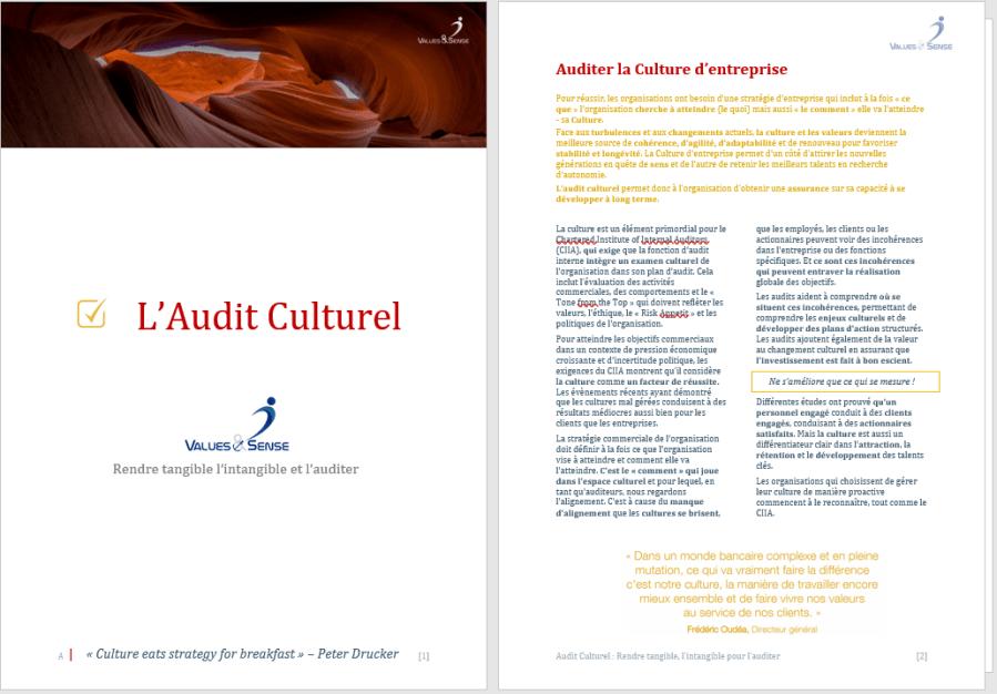 Audit-Culturel-Offre-.png