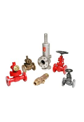 Steam and Safety Valves