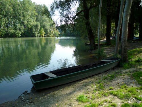 Exemplo de barquinho para o Rowing Camp em Gyor