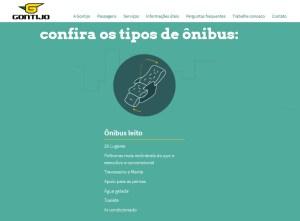 Gontijo 2019 300x221 - Serviço Leito Rodoviário – Análise desta oferta de serviço entre as empresas de ônibus