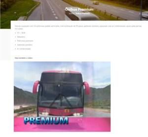 Util 2019. jpg 300x278 - Serviço Semi Leito – Conceitos sobre esta categoria de transporte rodoviário