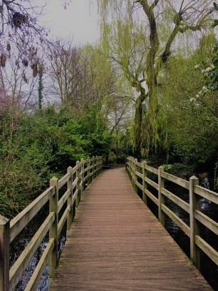 New-River-walk (2)
