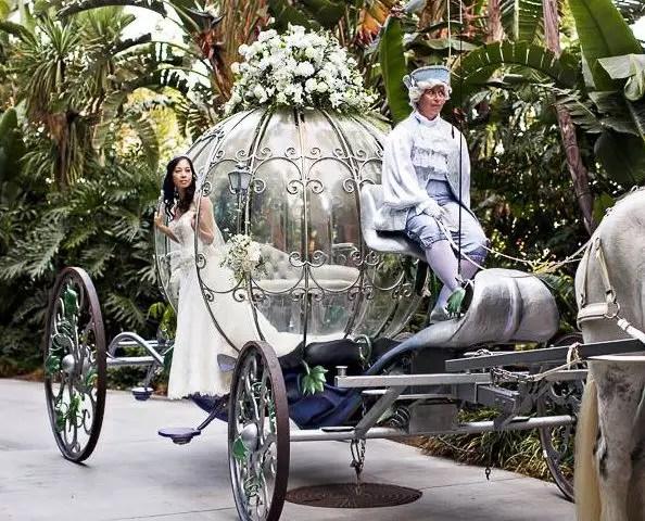 bodas en Disneyland