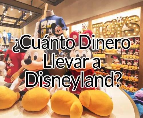 Cuanto dinero llevar a Disneyland California