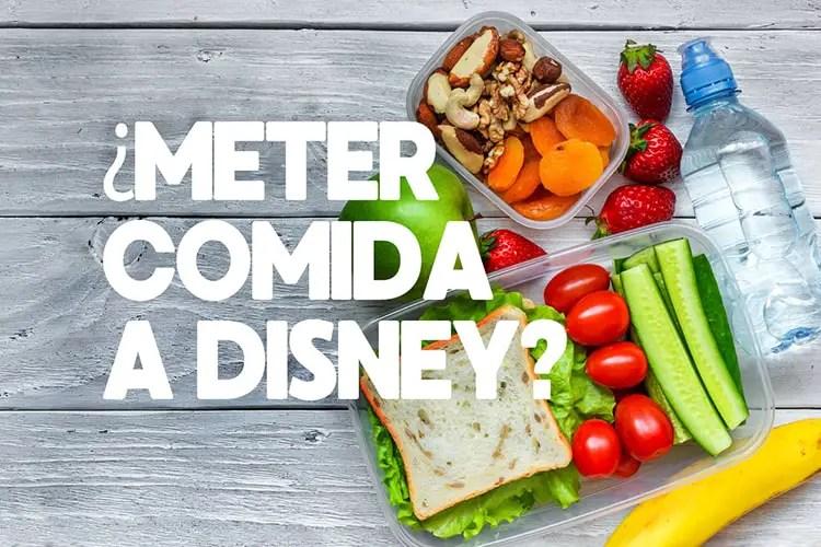 ¿Se Puede Meter Comida a Disneyland?