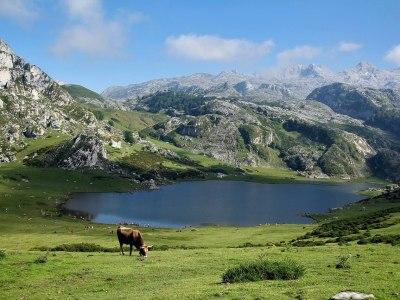 Un viaje relámpago a Asturias.
