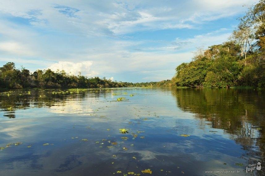 Fotos lindas de Manaus