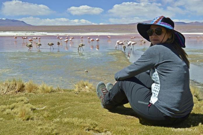 Laguna Colorada na Bolívia: melhores viagens