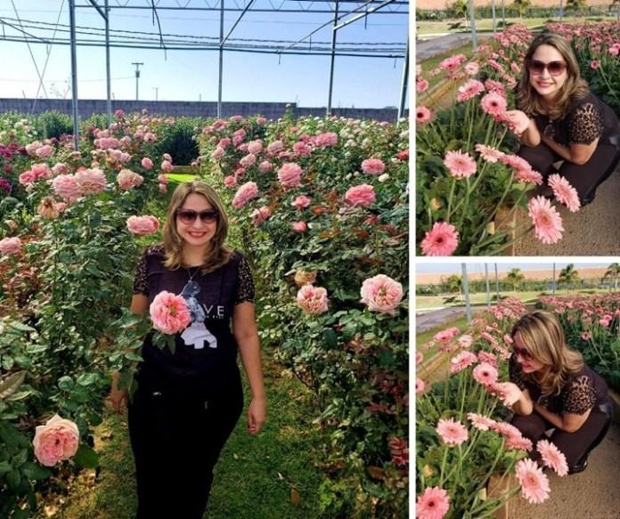 visitar plantação de flroes, flores em holambra, passeios em holambra