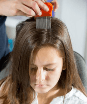 girl-with-lice-comb