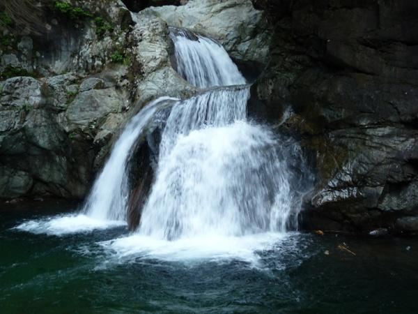 Lynn Canyon公园Twin Falls