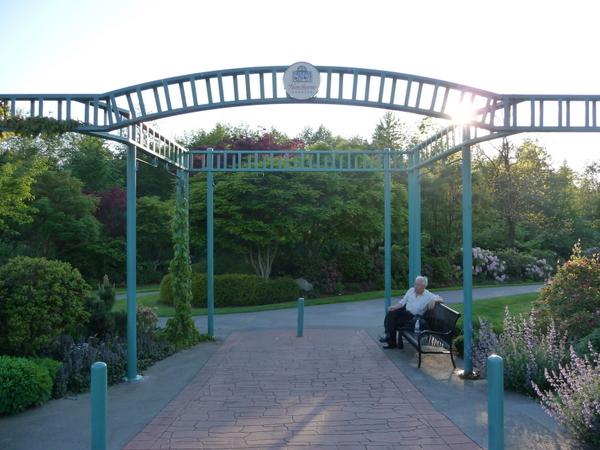 带你游花园:Hawthorne Garden