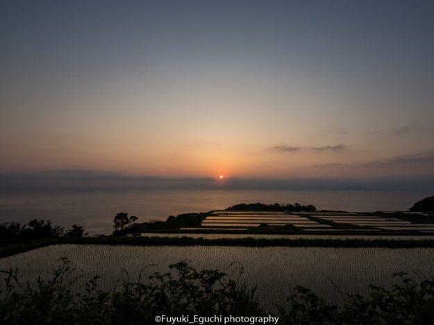 新井の棚田の日の出 (Canon EOS6D + TAMRON SP 15-30mm F2.8)