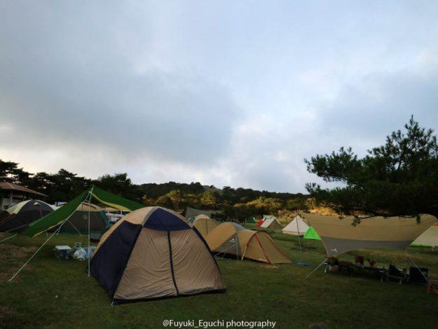 テントがかなり増えてます
