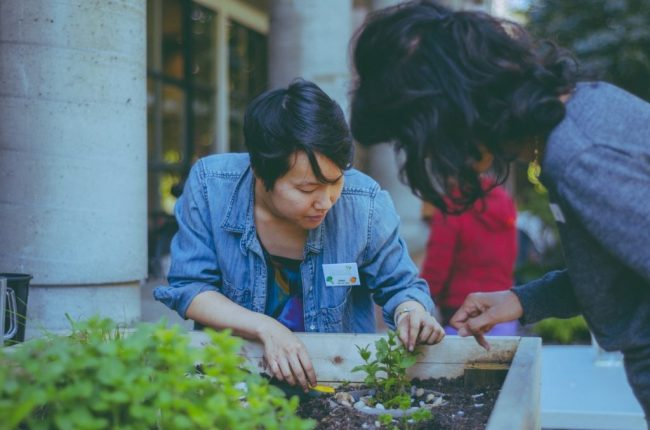Gordon House's Farmer Joey Liu teaching community members how to plant, water, and harvest herbs.