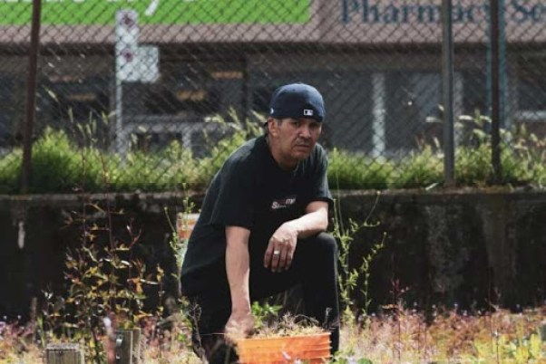 An image of participant gardening at one of the Downtown East Side Neighbourhood House's Right to Food Network sites