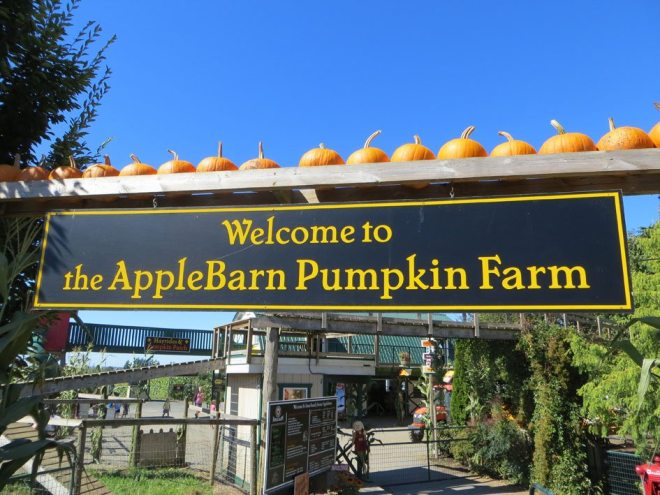 Kid-Friendly Vancouver Applebarn