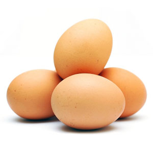 Free Range Eggs: The Real Definition