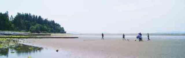 Crescent Beach Sand