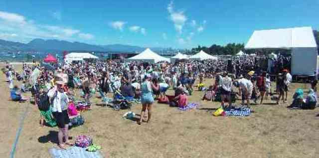 Folk Fest Crowds