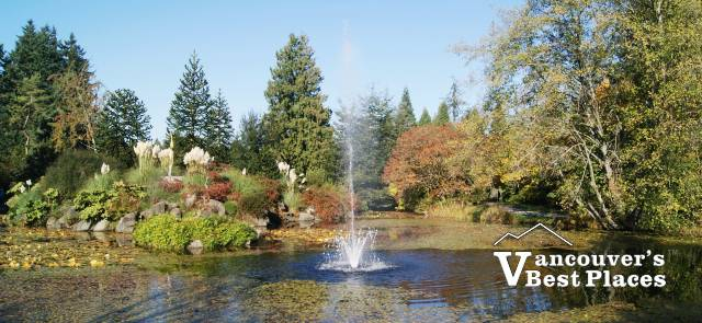 VanDusen Garden in Fall
