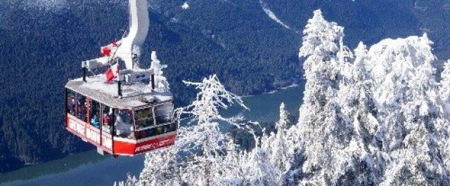 Grouse Mountain tram above snowy trees in the winter