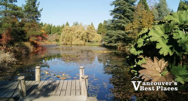 Pond at VanDusen Garden