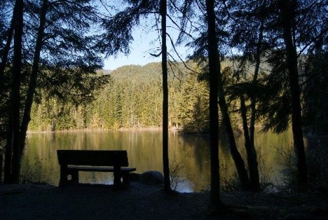 View from bench in the shadows at Rice Lake