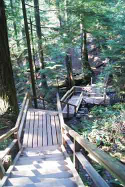 Baden Powell Trail Steps