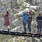 Capilano Bridge Visitors in Winter