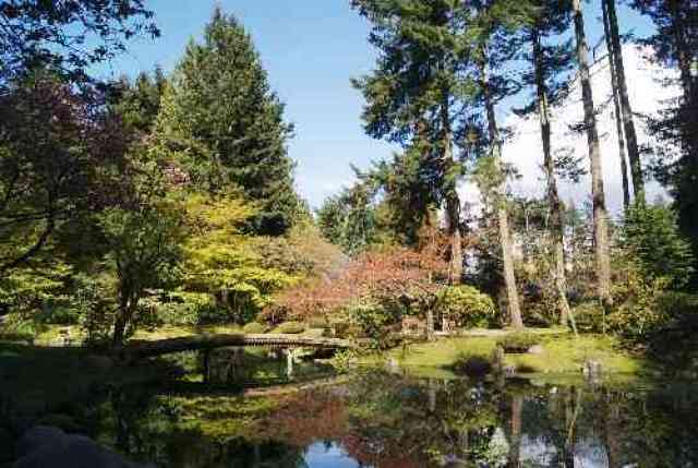 Nitobe Garden at UBC