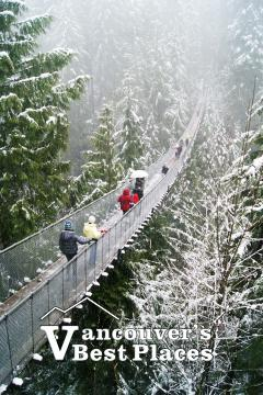 Capilano Suspension Bridge in Winter