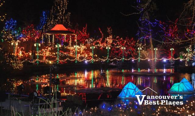 VanDusen Christmas Lights