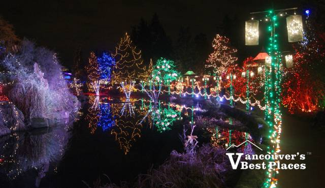 VanDusen Garden Christmas Lights