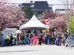 Cherry Blossoms and Vaisakhi Parades