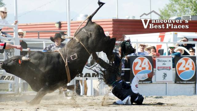 Falling off Rodeo Bull