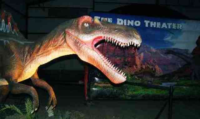 Discover the Dinosaurs T Rex
