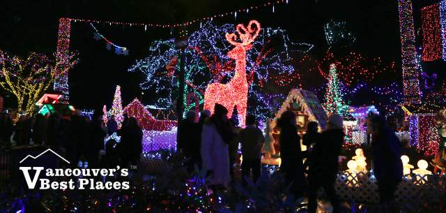 Christmas Done Bright.Best Christmas Activities In Vancouver Vancouver S Best Places