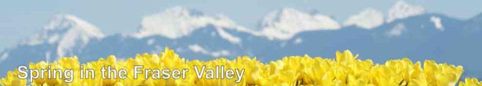 Spring in the Fraser Valley