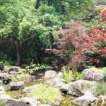 Darts Hill Garden