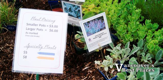 Darts Hill Plant Sale
