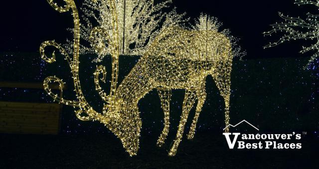 enchant christmas deer - Deer Christmas Lights