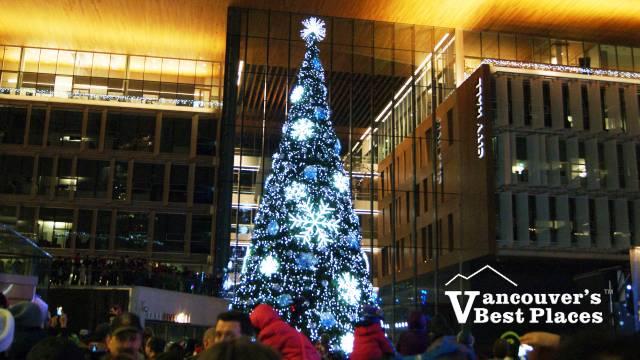 Surrey Tree Lighting at City Hall