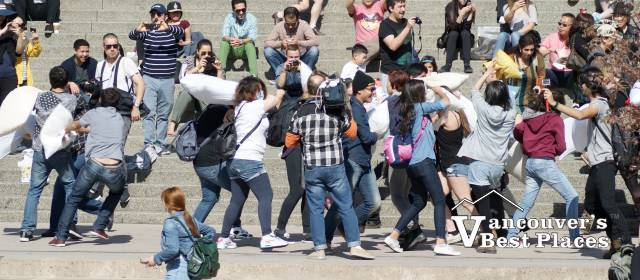 People Pillow Fighting