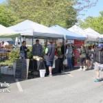 Market Vendors at Ambleside