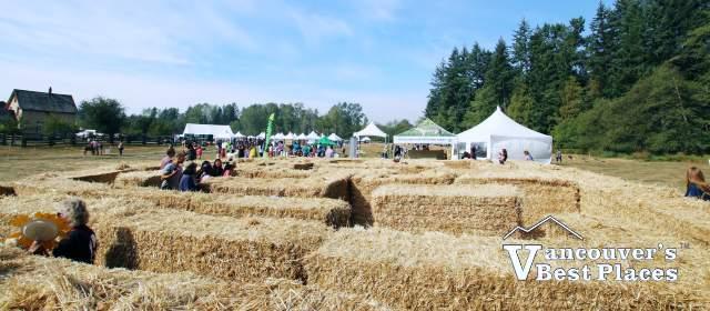 Country Celebration Straw Maze