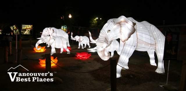 PNE Elephant Lights Display
