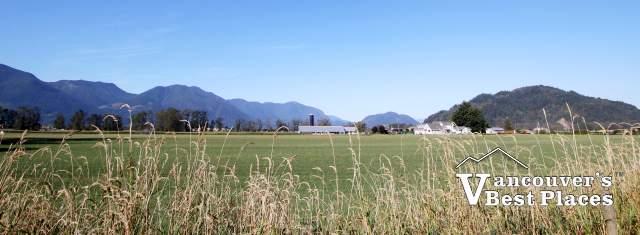 Farmland in Chilliwack