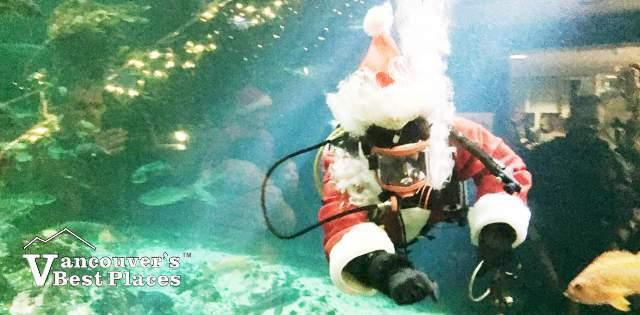 Scuba Santa at Vancouver Aquarium